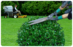 Landscaping Services in Goderich and Surrounding Areas - Image 1