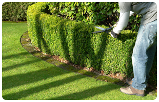 Landscaping Services in Goderich and Surrounding Areas - Image 3